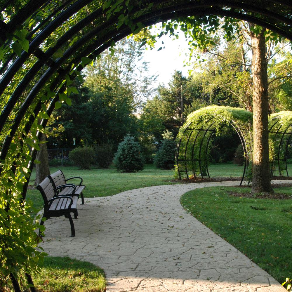 Sandholm Woods