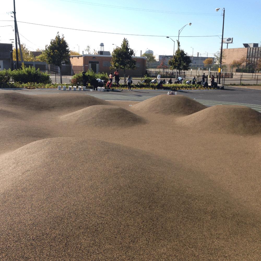 Leland Elementary - Hills